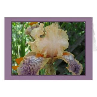 Iris amarillo tarjeta de felicitación