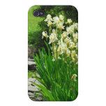 Iris amarillos iPhone 4 coberturas