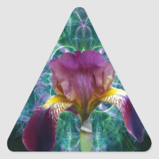 Iris and its meaning triangle sticker