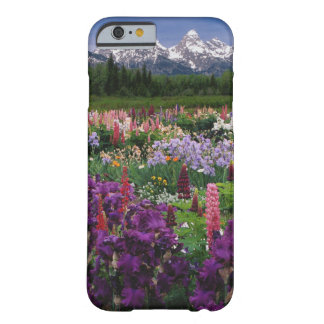 Iris and Lupine garden and Teton Range, Barely There iPhone 6 Case