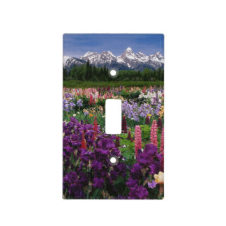 Iris and Lupine garden and Teton Range, Light Switch Cover
