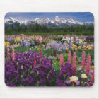 Iris and Lupine garden and Teton Range, Mouse Pad
