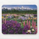 Iris and Lupine garden and Teton Range, Mousepad