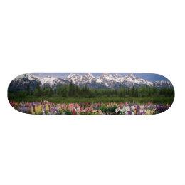 Iris and Lupine garden and Teton Range, Skateboard
