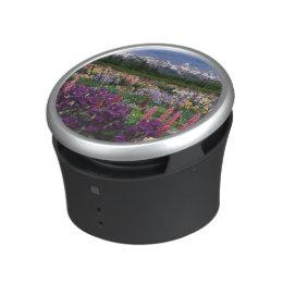 Iris and Lupine garden and Teton Range, Speaker
