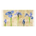 Iris antiguos - personalizar del fondo del iris de tarjetas fotográficas personalizadas