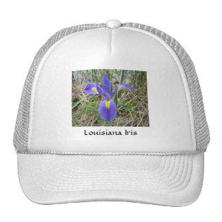 Iris azul grande de Luisiana Gorras