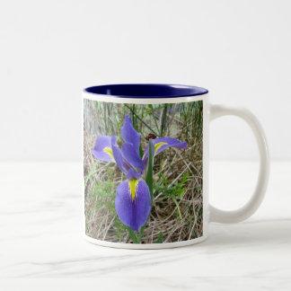Iris azul grande de Luisiana Taza De Dos Tonos