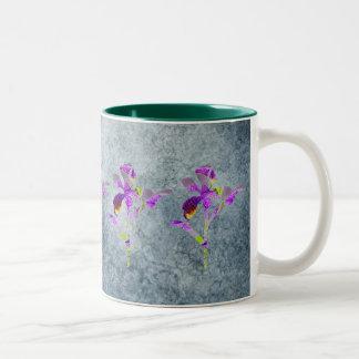Iris (azul/gris) taza de dos tonos