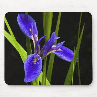 Iris azul Mousepad Alfombrilla De Ratón