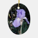Iris azul ornamentos para reyes magos