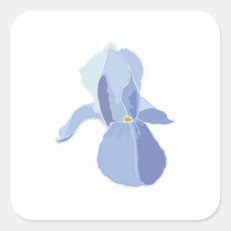 Iris azul calcomanías cuadradass