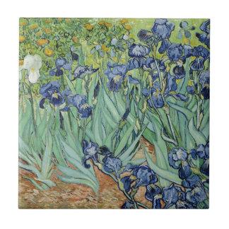Iris Azulejo Ceramica