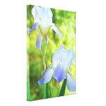 Iris azules románticos impresión en lona