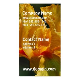 Iris barbudo amarillo tarjetas de visita
