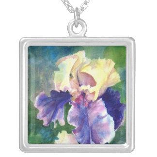 Iris barbudo gigante colgante cuadrado