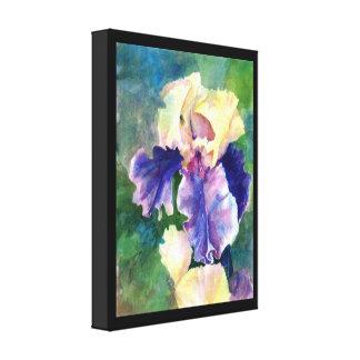 Iris barbudo gigante impresión en tela