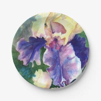 Iris barbudo gigante plato de papel de 7 pulgadas