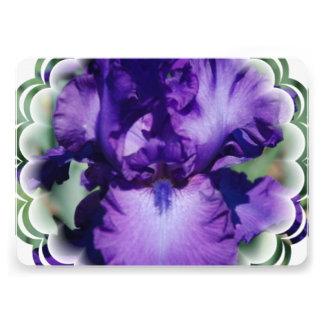Iris barbudo púrpura
