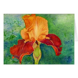 Iris barbudo tarjeta de felicitación