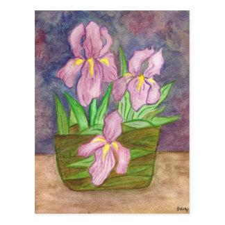 Iris Basket Postcard