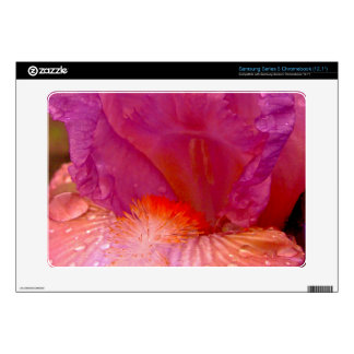 Iris Beauty Samsung Series 5 Chromebook Samsung Chromebook Skin
