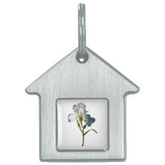 Iris blanco en sol placa de mascota