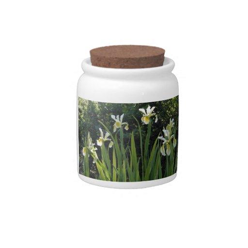 Iris blancos jarras para caramelos