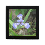 Iris Blue Flag Flower Jewelry Box