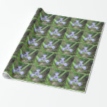 Iris Blue Flag Flower Wrapping Paper
