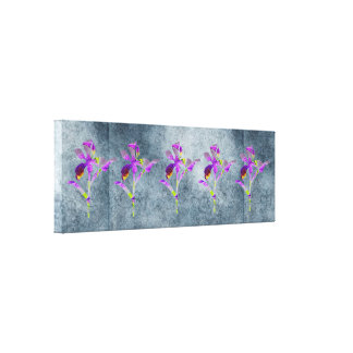 Iris (Blue/Gray) Canvas Print