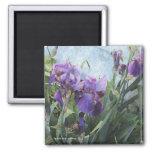 Iris Blue Wall Magnet