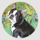 Iris - Boston Terrier #4 Etiquetas Redondas