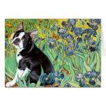 Iris - Boston Terrier #4 Tarjeta