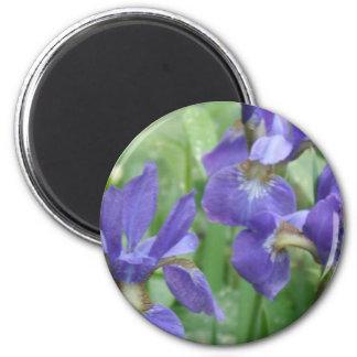 Iris Bulbs Round Magnet Magnets