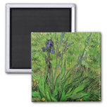Iris by Vincent van Gogh, Vintage Garden Fine Art 2 Inch Square Magnet