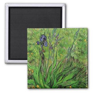 Iris by Vincent van Gogh, Vintage Impressionism 2 Inch Square Magnet