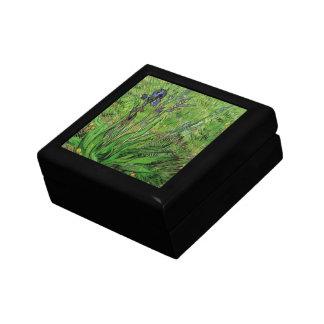 Iris by Vincent van Gogh, Vintage Impressionism Trinket Box