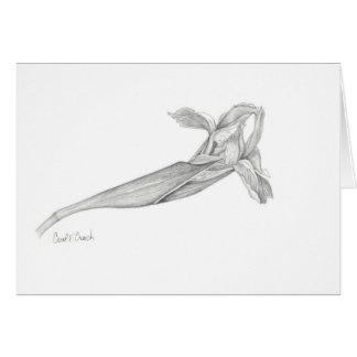 Iris Stationery Note Card
