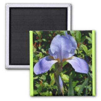 Iris Character Magnet