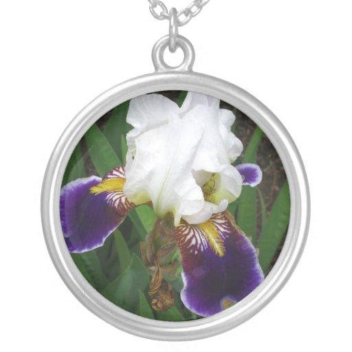 Iris Colgante Redondo