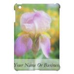 Iris colorido de la primavera