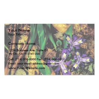Iris con cresta enano tarjetas de visita
