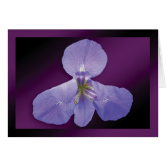 """Iris"" - Dark Purple Background GC Greeting Card"
