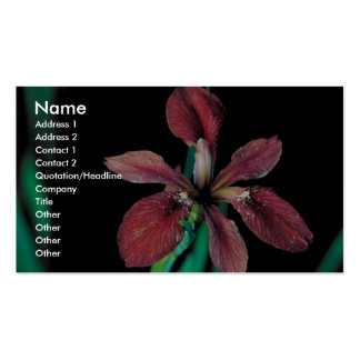 Iris de cobre tarjetas de visita