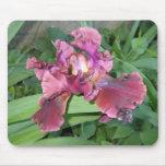 Iris de color de malva Mousepad Alfombrilla De Ratones