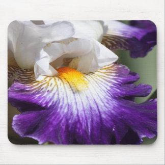 Iris de color morado oscuro y blanco Mousepad