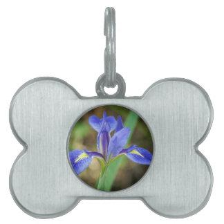 Iris de la Florida Placas De Nombre De Mascota