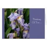 Iris de Tennessee Felicitaciones