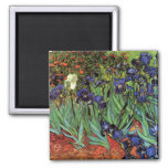 Iris de Van Gogh, arte del impresionismo del poste Iman De Frigorífico